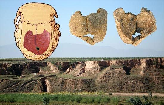 Loạn luân từng xảy ra như cơm bữa thời cổ đại?
