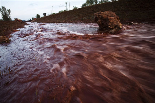 """""""Lũ bùn đỏ"""" gây hại như thế nào?"""