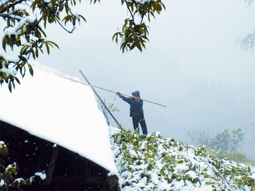Mưa tuyết bất thường ở Sa Pa