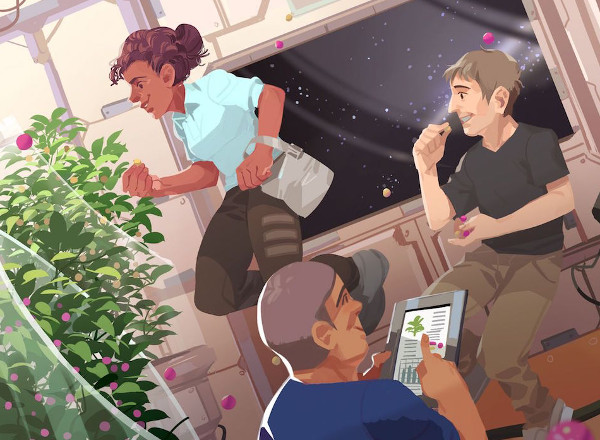 NASA giải quyết vấn đề thực phẩm trên không gian như thế nào?