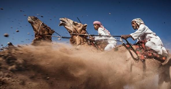 National Geographic công bố những bức ảnh ấn tượng nhất năm 2015
