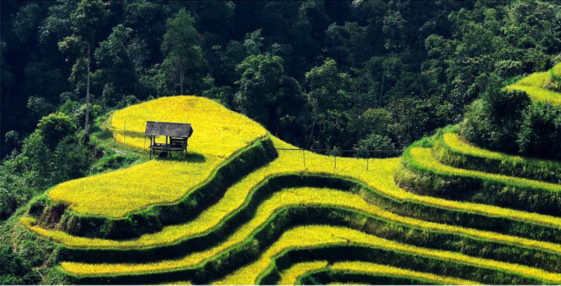 Ngắm vẻ đẹp của đất và người Hoàng Su Phì