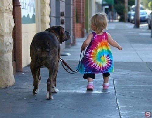Nhà có chó, trẻ năng động hơn