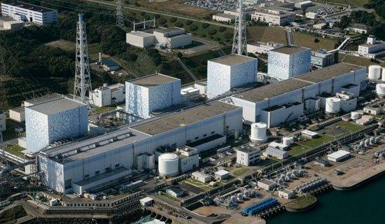 Nhật rải nhựa thông 'cứu' nhà máy Fukushima