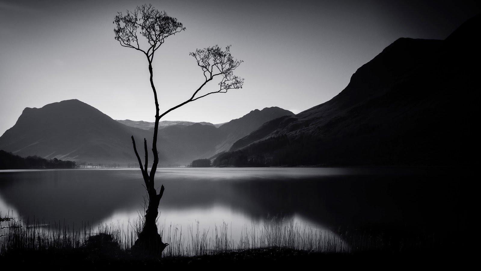 Những ảnh trắng đen đẹp nhất trong năm 2015 từ Flickr