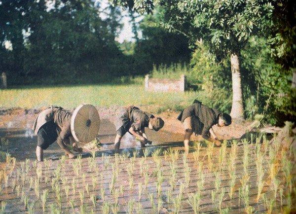 Những hình ảnh Việt Nam tuyệt đẹp của 100 năm về trước