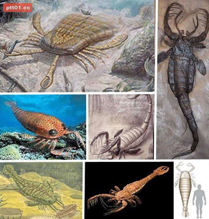 Những loài thú khổng lồ thời tiền sử
