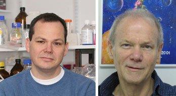 Phát hiện gen p53 kiềm chế sự phát triển của các tế bào ung thư