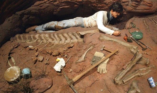 Phát hiện hóa thạch khủng long khổng lồ tại Argentina