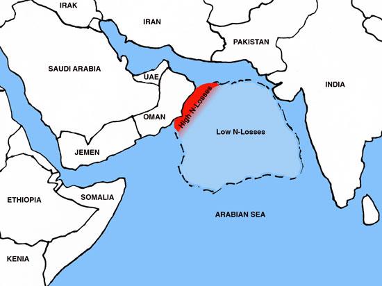 Quá trình tổn thất nitơ đang xảy ra trầm trọng ở biển Ả-Rập
