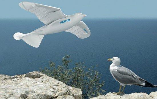 Robot bay như chim hải âu