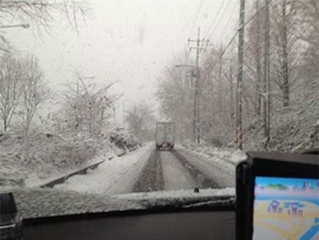 Seoul có tuyết rơi giữa tháng Tư sau 20 năm