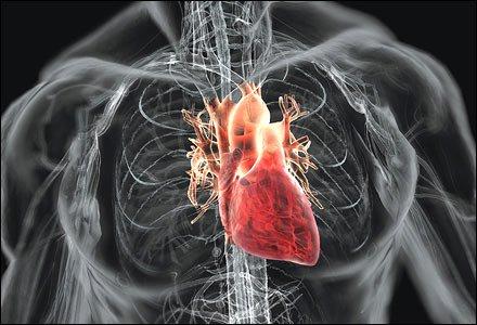 Siêu âm trong lòng động mạch vành