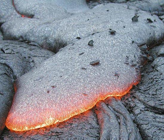 Sinh vật phù du phát triển mạnh nhờ núi lửa
