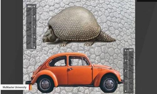 Tatu kỷ Băng Hà to bằng xe ôtô