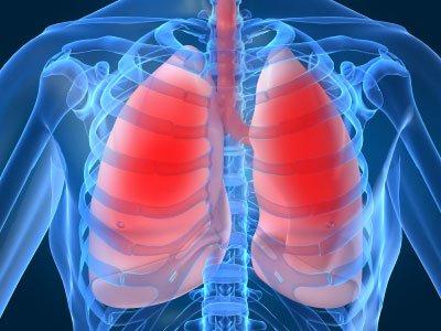 Tế bào gốc ở phổi người có khả năng tự tái tạo