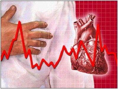 Tế bào tủy xương có tác dụng chữa bệnh suy tim