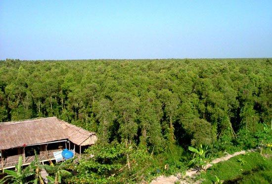 Thêm nhiều động vật quý hiếm ở rừng U Minh Hạ