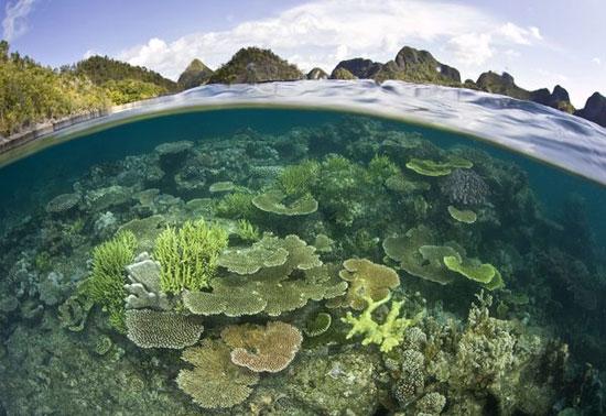 Thiên nhiên vòng quanh thế giới qua ống kính National Geographic