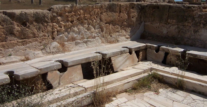 Thủ phạm khiến chúng ta nhiễm giun, chấy là... người La Mã cổ đại