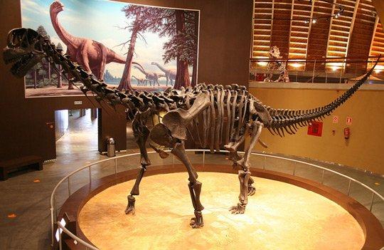 Trung Quốc tìm ra 60 quần thể dấu vết khủng long