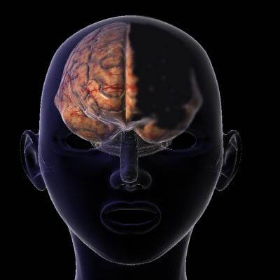 Vẫn sống tốt dù thiếu mất nửa bộ não