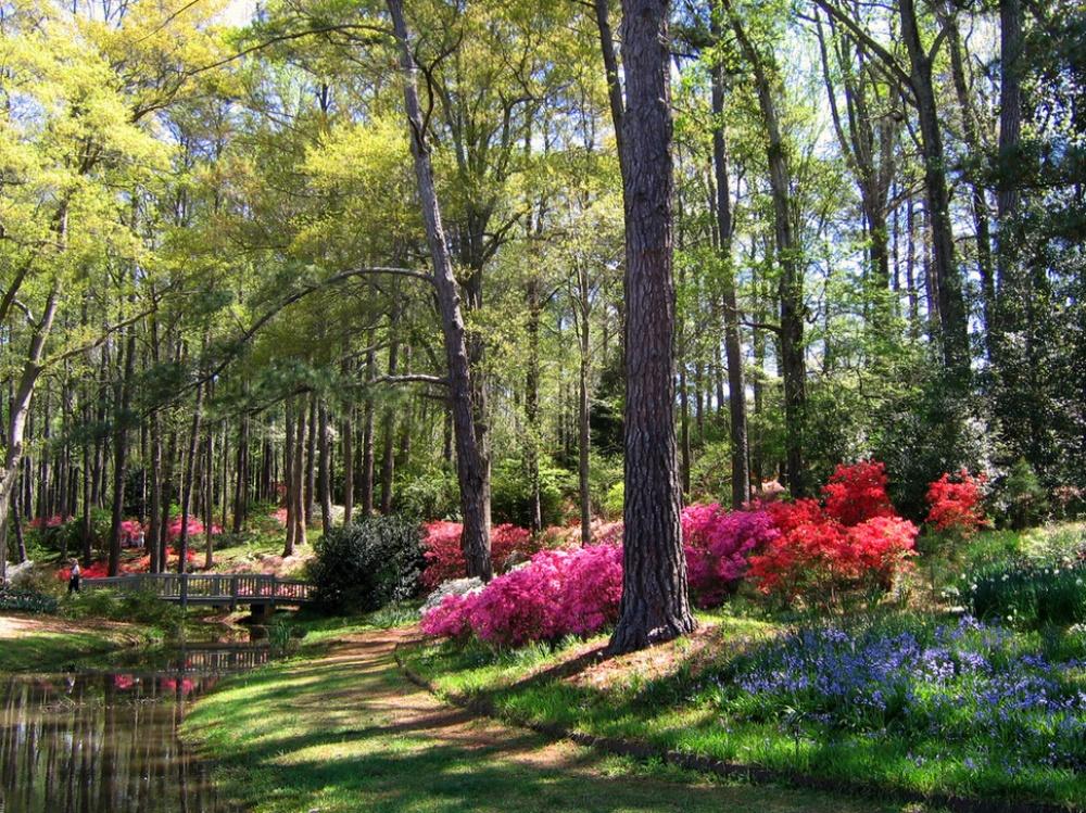 """Vẻ đẹp """"khó cưỡng"""" của 20 địa danh trên thế giới khi mùa xuân đến"""