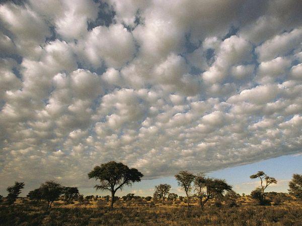 Vẻ đẹp lạ kì của những đám mây
