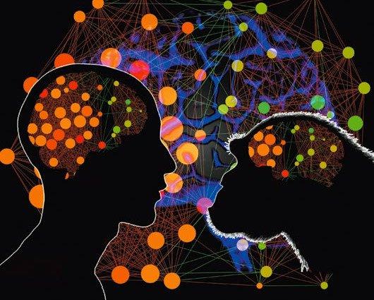 Vì sao con người thông minh hơn tinh tinh?