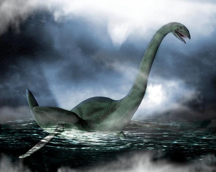 Xác động vật dạt vào bờ Loch Ness, nghi là quái vật huyền thoại