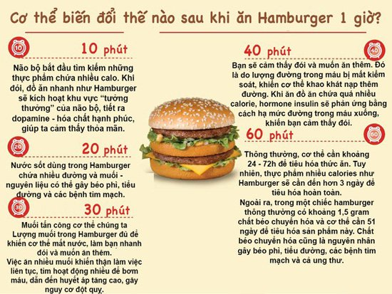 Xem cơ thể biến đổi trong từng phút khi bạn ăn 1 chiếc Hambuger