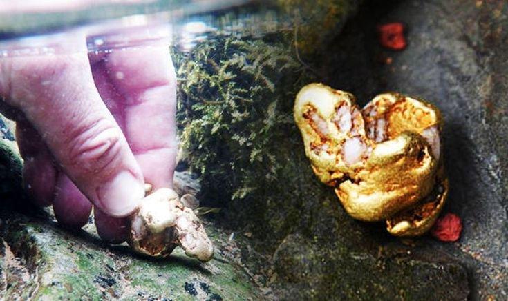 Anh: Tìm thấy cục vàng tự nhiên lớn nhất sau 500 năm, giá 1,5 tỷ đồng