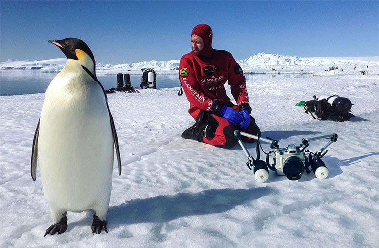 Bất ngờ khi phát hiện hệ sinh thái khủng ở nơi hẻo lánh như Nam Cực