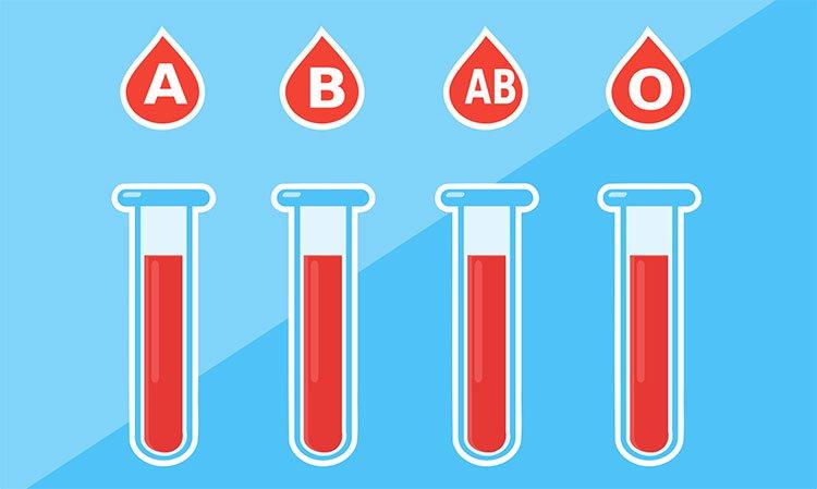 Các nhà khoa học chuyển hiệu quả máu nhóm A,B thành nhóm O, có thể truyền cho bất kỳ ai