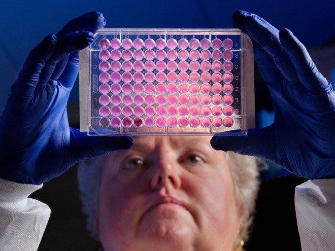 Cạn kiệt kháng sinh: Các công ty dược phẩm lần lượt đóng cửa chương trình nghiên cứu