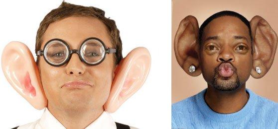 Có phải cứ tai to hơn là sẽ nghe rõ hơn - câu hỏi khiến 90% người nhầm tưởng!