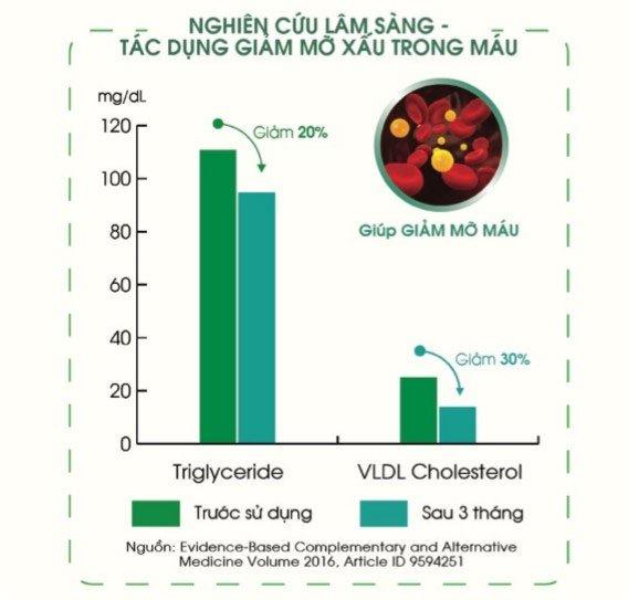 Công dụng chữa bệnh của tinh dầu thông đỏ Hàn Quốc