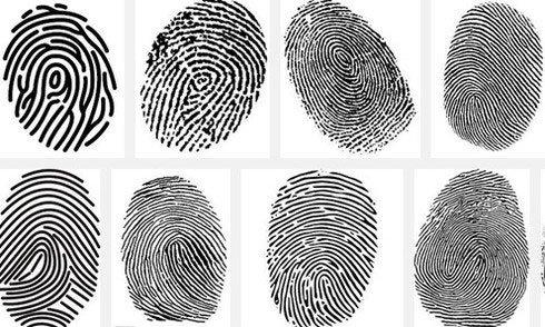 Dấu vân tay có thay đổi sau khi chúng ta chết không? Câu trả lời khiến ai cũng bất ngờ!