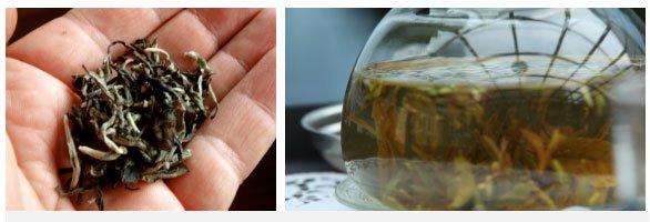 Dãy Himalaya là quê hương của giống trà quý hiếm nhất của Ấn Độ: 50 triệu mới được 1kg