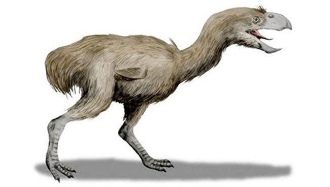 Điểm danh những loài động vật kỳ dị từng thống trị Trái đất