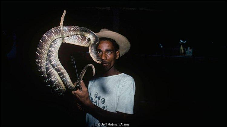 Khám phá bộ lạc người rắn bí ẩn ở Ấn Độ