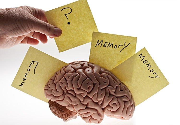 Kí ức đầu tiên của bạn chỉ là hư cấu