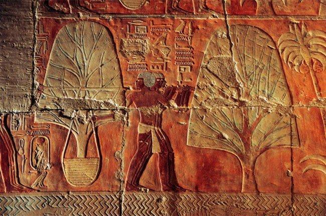 Lăng mộ nữ hoàng Ai Cập quyền lực đẹp bất chấp dù bị con ghẻ phá hoại
