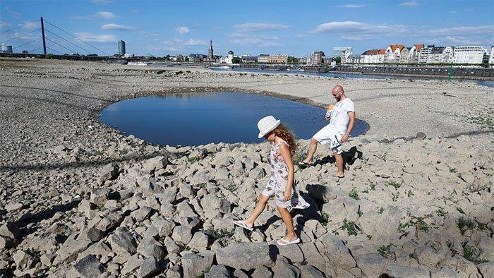 Nhựa đường chảy, cảnh khuyển được phát giày vì châu Âu quá nóng