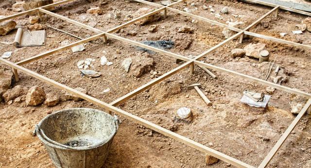 Tìm thấy di cốt voi cổ từng sống cách đây 3 triệu năm