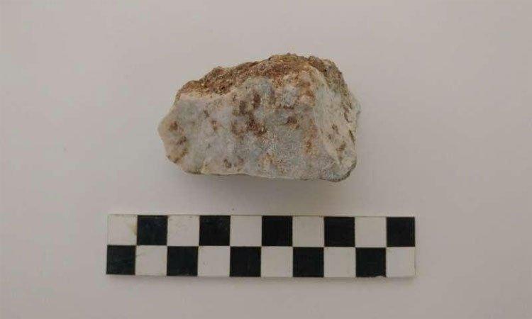 Tìm thấy xác ma ca rồng thời La Mã cổ đại ở Ý