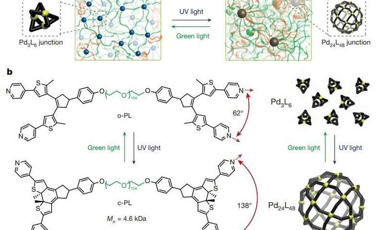 Vật liệu polyme nhạy sáng nhanh chóng chuyển thể từ cứng sang mềm