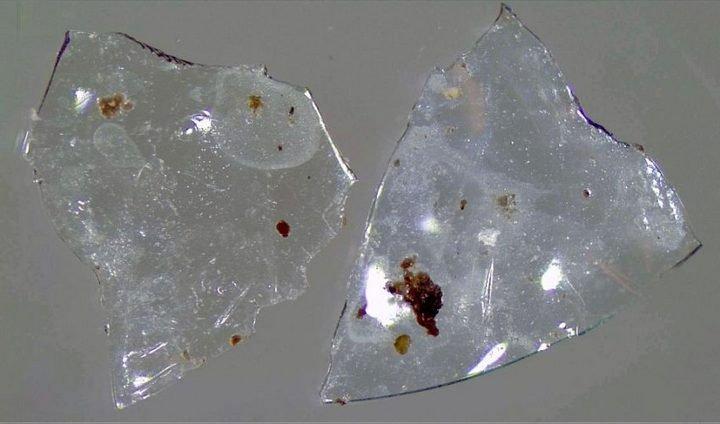 Xả kính áp tròng cũ vào toilet - mối nguy hiểm rất lớn tới môi trường