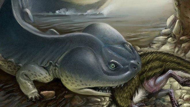 100 triệu năm trước, Nam Cực từng tồn tại loài kỳ nhông khổng lồ to lớn hơn cả xe ô tô