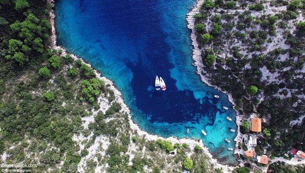11 bí mật chưa kể về 'thủy quái' vùng Caribe